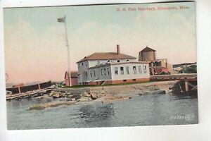 US Fish Hatchery Gloucester MA