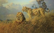 """Donald Grant   """"AFRICAN EVENING-LIONS""""   MINT Condition  *Ships Same day*"""