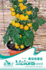 Original Package 30 Tomato Seeds Yellow Small Cherry Lycopersicon Seed B039 Hot