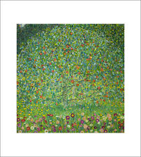 Klimt - Apple Tree - fine art giclee print poster wall art various sizes