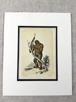 1853 Antico Stampa Orango Ape Primate Scimmia Originale Vittoriano Art