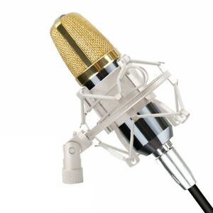 Studio Cardioid Condenser Mic Kit Podcast Microphone for Video YouTube Recording