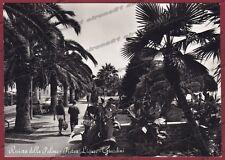 SAVONA PIETRA LIGURE 39 GIARDINI Cartolina FOTOGRAFICA viaggiata 1963