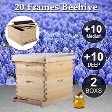 20-Frame Langstroth Beehive Frames /Bee Hive Frame for Beekeeping w/ Metal Roof