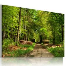 FORREST TREES SPRING PARADISE View Canvas Wall Art Picture Large L451  MATAGA .