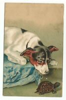1901 US SC #328 on Art Postcard,  A Dog with A Turtle
