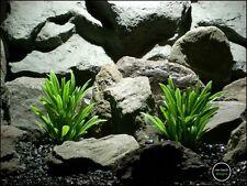 plastic aquarium plants: green river grass from ron beck designs. pap196