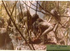 RUGGERO DEODATO CANNIBAL HOLOCAUST 1980 VINTAGE PHOTO ORIGINAL #1
