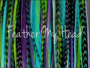 """16 Pc Feather Hair Extensions 9""""-12"""" (23-30cm) Long Salon Quality  Accessory"""