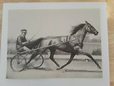 """Horse Print, GREYHOUND, """"The Grey Ghost"""", 11"""" x 14"""" matted, 1939 C.W. Anderson"""