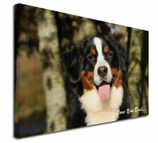 More details for bernese mountain dog 'love you dad' x-large 30