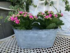 French Vintage Style Garden Planter Trough Zinc Metal Plant Pots Container Herbs