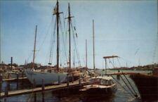 Falmouth Cape Cod Harbor Yacht Old Postcard