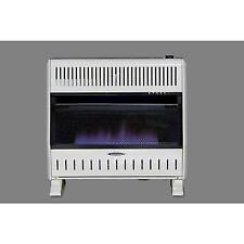 Reddy Heater Bwh 30 Nltbdc Blue Flame Dual-Fuel Wall Heater with Blower