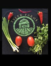 Medium Salsa Kit- 50+ Seeds- Cayenne Pepper, Green Onion, Tomato, Cilantro