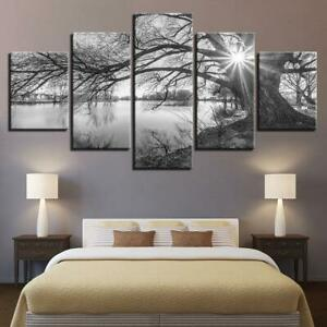 Lakeside Big Trees Black & White 5 Piece Canvas Wall Art