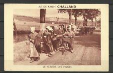 France 1925 - Grapes