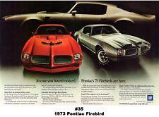 13x19 1973 Pontiac Firebird ad Poster Art Print Ram Air Formula Trans-Am 400 455