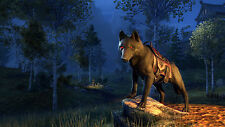 Unheilswolf Mount - Elder Scrolls Online - ESO - Doom Wolf Mount - Code