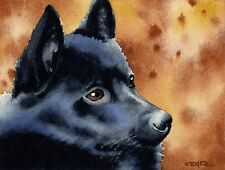 SCHIPPERKE Watercolor DOG 8 x 10 ART Print Signed by Artist DJR