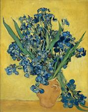 VINCENT VAN GOGH IRISES flowers floral portrait art print reproduction on canvas