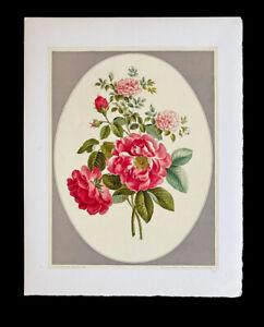 Gerard D'Houville / Flower Prints Collection De Douze Bouquets par John Edwards