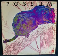 Possum (self titled)~Near Mint Country Rock Album~Capitol #St-648