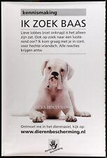"HUGE Original RARE ANIMAL SHELTER BULLDOG Dutch Bus Shelter Poster 47""X70"""