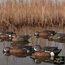 NEW ZINK AVIAN-X TOP FLIGHT BLUE WING TEAL FLOATER FLOATING DECOYS 6-PACK