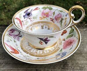 Fine Derby c1825 Cup & Saucer Birds, Fruit Flowers & Butterfly English Porcelain