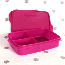 NEW Tupperware Large Divided Lunch Box Sandwich Keeper Purple