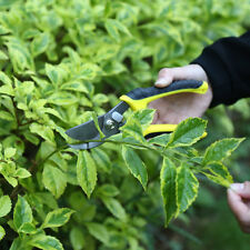 Fruit Tree Pruning Shears Bonsai Pruners Gardening Graft EquipmentTools Graft