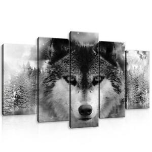 CANVAS Leinwand bilder XXL Wolf Bild Wandbild F05292