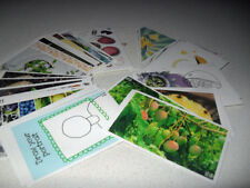 Stickers Multi-Coloured Scrapbooking Embellishments