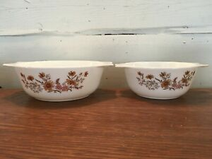 Lot of 2 Pyrex Made In England Country Autumn Casserole Dishes No Lid