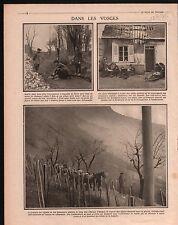 WWI Poilus Chasseurs Alpins Ambulance Vosges Alsace France 1915 ILLUSTRATION