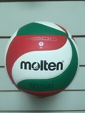 Molten 4500 Official Volleyball - Size 5