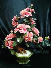 REAL LARGE JADE BONSAI FLOWER TREE (203-18)