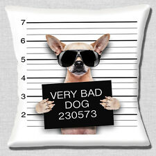"""Funny Fawn  Chihuahua Bad Dog Line Up Photo Print 16""""x16"""" 40cm Cushion Cover"""