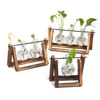 Hanging Glass Vase Flower Plant Terrarium Wooden Tray Party Wedding
