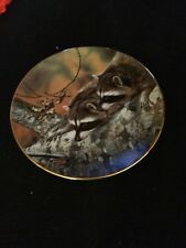 OUR WOODLAND FRIENDS Fascination CARL BRENDERS Raccoon Collection Plate