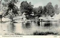 Hillsdale Michigan~Cold Springs & Trout Pond~Ladies on Bank~1908 CU Williams PC