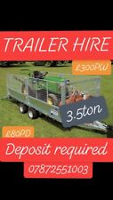 ifor williams trailer 12ft X 6.6ft - Ramps - Cage Mesh - For Hire
