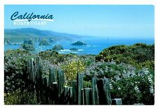 California North Coast Postcard Spring Flowers Water Rocks Northern Unposted
