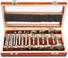 1/4 In. - 2-1/8 In. Forstner Drill Bit Set With 3/8 In. Shanks 16 Pc