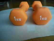 2 x 1 KG Dumbbells Orange Home Fitness Workout Equipment Barely Used