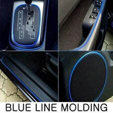 Blue Line Molding (Fits: CHRYSLER 200 300 Hemi SRT Town Country Pacifica 300C)