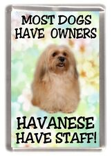 "Havanese Dog Fridge Magnet ""Most Dogs Have Owners Havanese Have Staff"""