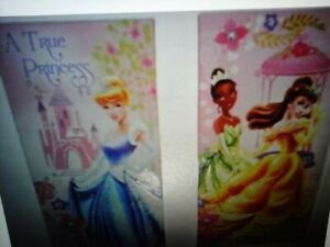 2 Canvas Disney Princess wall pictures. Used. Great condition.