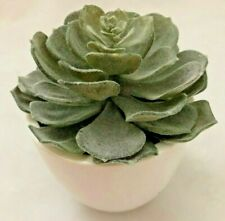 "Green 5X5.5"" Single Faux Suculant Cactus Flower in White Vase"